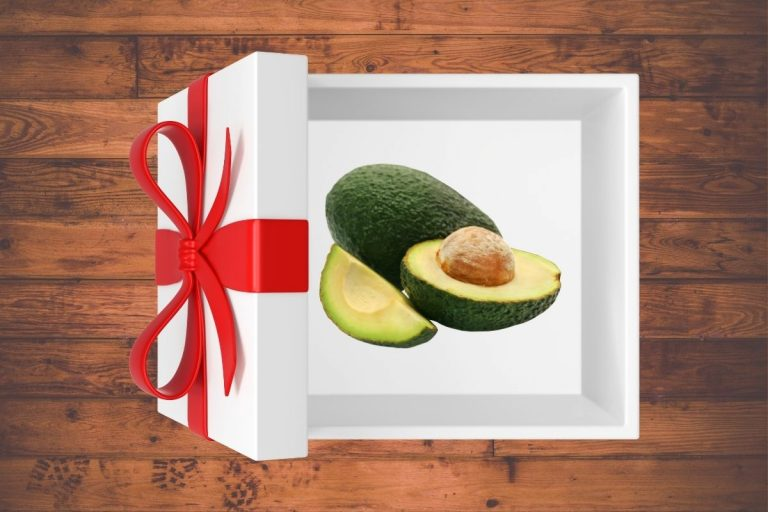 31 Awesome Gifts for the Avocado Lover