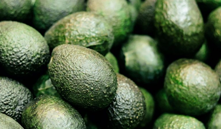 Can You Eat an Unripe Avocado?