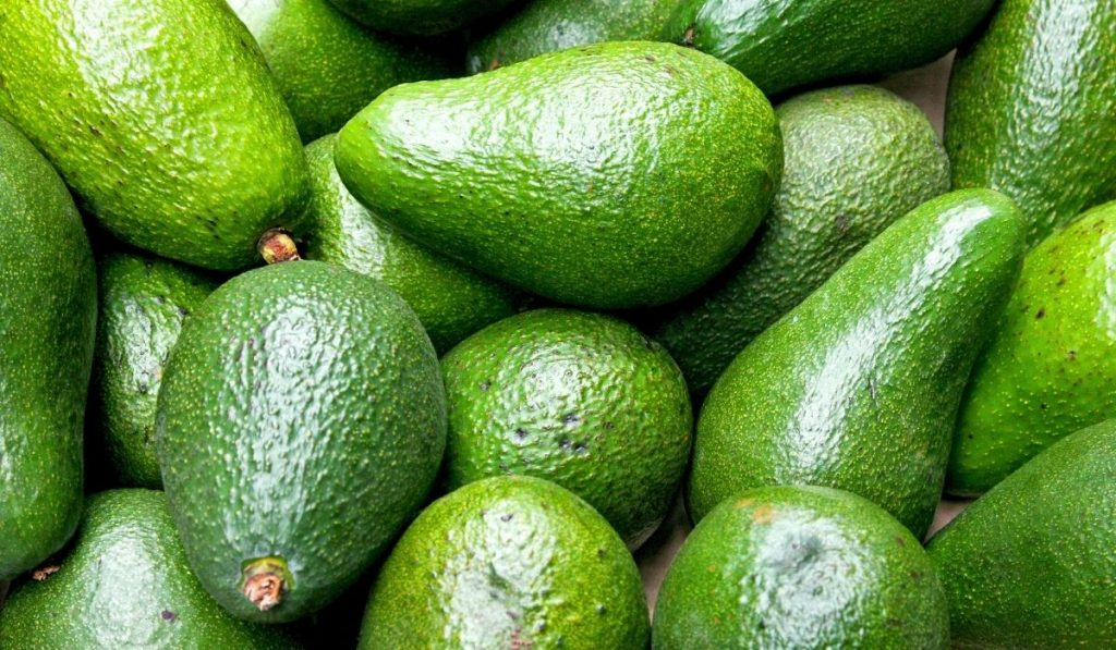 bunch of green and fresh avocados